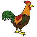 Rooster Royalty Free Stock Photography - 22909097