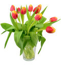 Vase With Tulip Flowers Royalty Free Stock Photography - 22964647