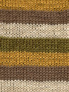 Knitted Wool Stripes. Stock Photo - 2304230