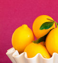 Lemons In A White Bowl With Magenta Background Stock Images - 23065224