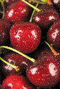 Red Cherries Royalty Free Stock Photo - 23068045