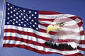 Collage Of American Flag And Bald Eagle Royalty Free Stock Photography - 23151317