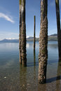 Crusty Pilings Royalty Free Stock Images - 2324179