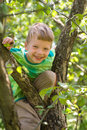 Boy On An Apple Tree Royalty Free Stock Photos - 23211388
