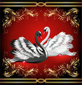 White And Black Swan On Red Background Stock Photo - 23263240