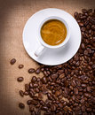 Cup Of Hot Drink Royalty Free Stock Photo - 23282615