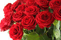 Red Roses Stock Image - 23284751