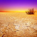 Water Starved Landscape Stock Image - 23367871