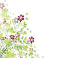 Spring Floral Background Royalty Free Stock Photos - 23378498