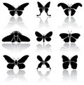 Butterflies Royalty Free Stock Photography - 23404077