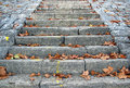 Stone Stairs Royalty Free Stock Images - 23430919