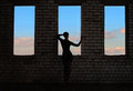 Silhouette Of Girl On The Background Of T Royalty Free Stock Images - 23442309