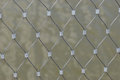 Fence Mesh Royalty Free Stock Photography - 23479277