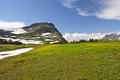 High Alpine Meadow In The Summer Royalty Free Stock Photography - 23491067