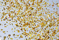 Flying Confetti In Sky Royalty Free Stock Image - 23494176