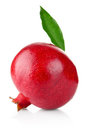 Ripe Pomegranate With Green Leaf Royalty Free Stock Photography - 23498047