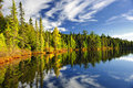 Forest Reflecting In Lake Royalty Free Stock Image - 23506576