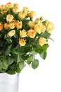 Bouquet Of Roses Royalty Free Stock Image - 23557756