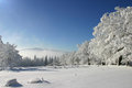 Winter Royalty Free Stock Images - 23581079