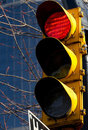 Red Stop Light Royalty Free Stock Photo - 23588075