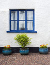 Blue Window Royalty Free Stock Photos - 23601108