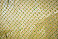 Yellow Green Fish Net Stock Images - 23625844