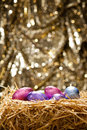 Chocolate Easter Eggs In A Natural Straw Nest Stock Images - 23634544