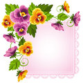 Pansy Stock Photography - 23692472