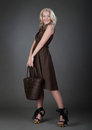 A Beautiful Woman With Handbag Stock Photo - 23708400