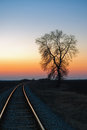 Tree By The Railway At Sunset Royalty Free Stock Image - 23709176