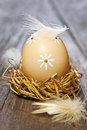 Easter Egg In Nest Royalty Free Stock Image - 23719966