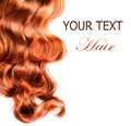 Curly Red Hair Stock Photo - 23730360