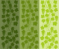 Seamless Floral Background With A Vine Stock Photography - 23743712