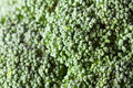 Broccoli Texture Stock Images - 23747484