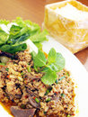 Thai Spicy Minced Meat Salad Royalty Free Stock Photography - 23749207