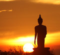Silhouette Of Buddha Statue Royalty Free Stock Images - 23768649