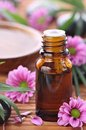 Aromatherapy Bottle With Pink Flowers Stock Photography - 23782222