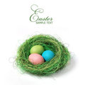 Easter Nest Royalty Free Stock Image - 23844816