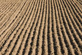 Ploughed Field Stock Photos - 23875943