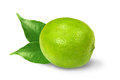 Lime With Leaves Royalty Free Stock Images - 23900759