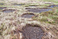Bare Patches Of Permafrost Royalty Free Stock Image - 23942646