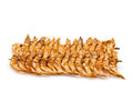 Brochette Of Dried Shrimp Royalty Free Stock Photography - 23950607