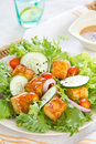 Grilled Tofu Salad With Sesame Dressing Royalty Free Stock Photography - 23966147