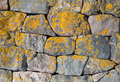 Old Stone Wall With Bright Lichen Stock Image - 23997631