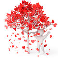 Rose Petals In Heart Shape Royalty Free Stock Photo - 23998525