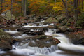 Stream At Ricketts Glen State Park PA Stock Images - 24082204
