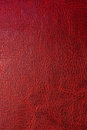 Red Leather Background Stock Image - 24189081