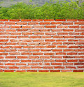 Brick Wall On Grass And Trees Royalty Free Stock Photography - 24203557