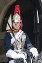 Portrait Of Royal Horse Guards In Typical Uniform Stock Image - 24220851