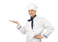 Male Chef Stock Images - 24263124